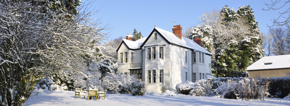 Manor Bedw in the snow