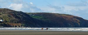 Horses on Poppit Sands